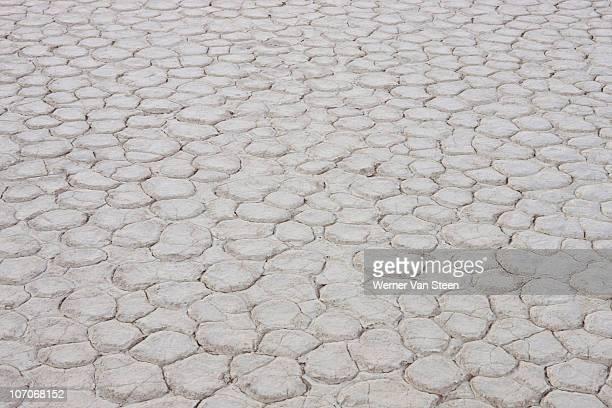 dead vlei clay bottom - nature stockfoto's en -beelden