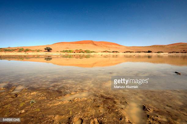 dead vlei lake sand dunes water reflections - reflection lake stock photos and pictures