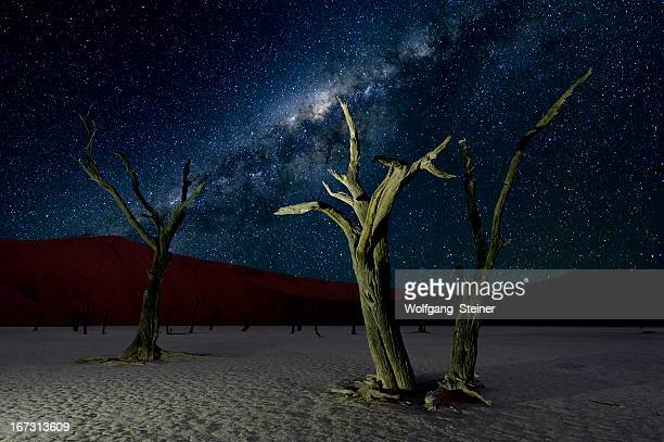Deadvlei and the Milky Way