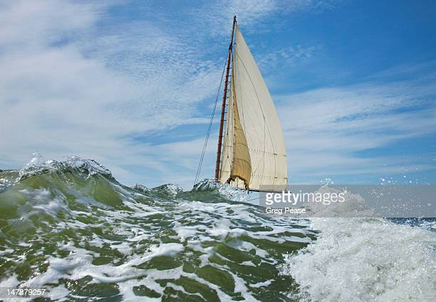 deal island annual skipjack race - チェサピークベイ ストックフォトと画像