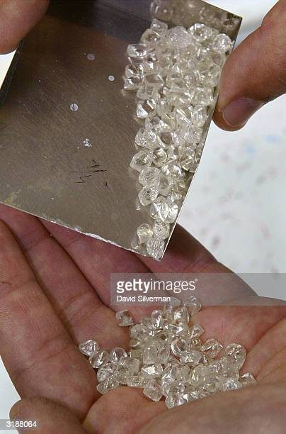 A dealer looks through a delivery of rough diamonds at a trading and polishing firm April 1 2004 in Ramat Gan near Tel Aviv Israel leads the world in...