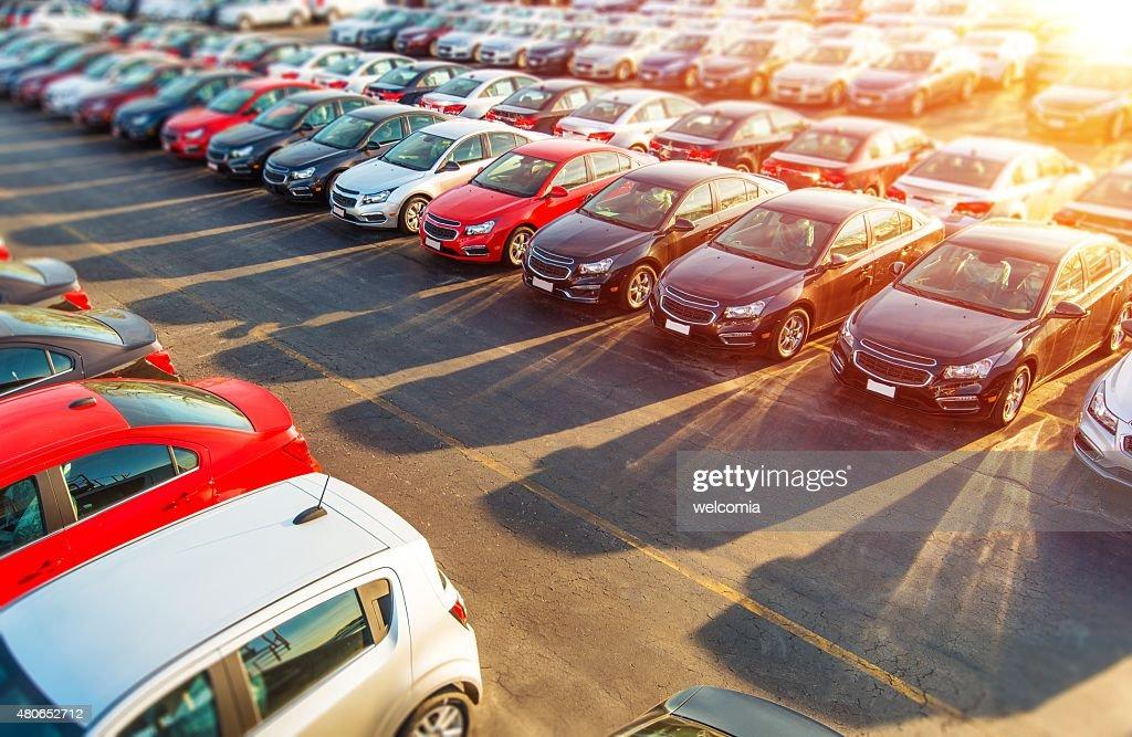 Dealer New Cars Stock : Stock Photo