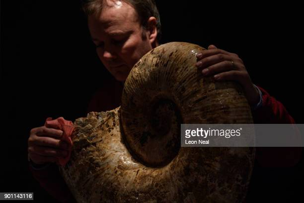 A dealer poses with a 120 million year old Ammonite at the Mayfair Antiques and Fine Arts Fair on January 4 2018 in London England Running from 47...