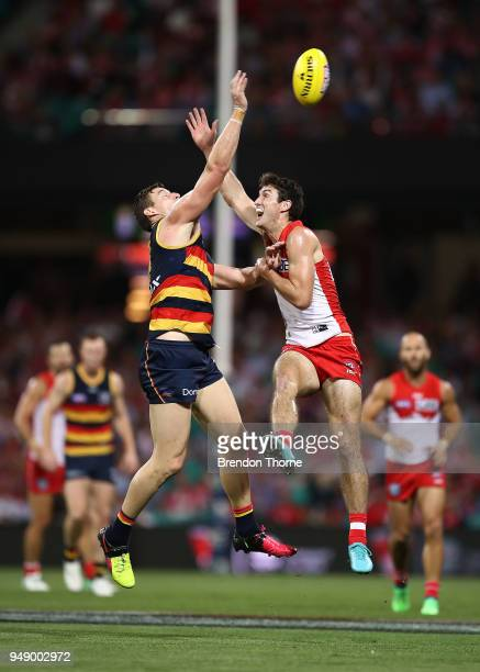 Dean Towers of the Swans contests the ball Josh Jenkins of the Crows during the round five AFL match between the Sydney Swans and the Adelaide Crows...
