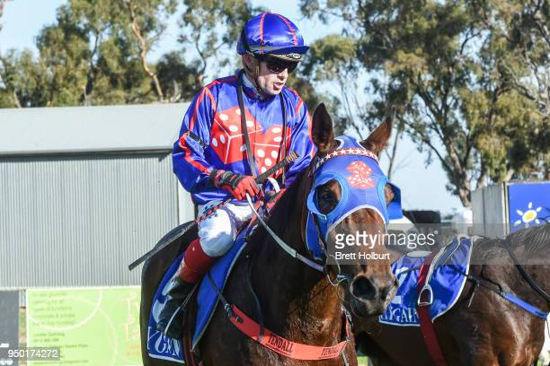 Dean Yendall returns to the mounting yard on Lasayette after winning the Burke Builders BM58 Handicap at Echuca Racecourse on April 23 2018 in Echuca...