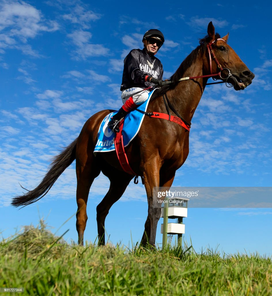 Dean Yendall riding Leicester after winning Race 5 during Melbourne Racing at Sandown on March 14, 2018 in Melbourne, Australia.