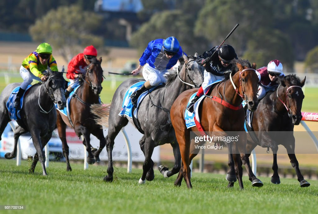 Dean Yendall riding Leicester winning Race 5 during Melbourne Racing at Sandown on March 14, 2018 in Melbourne, Australia.