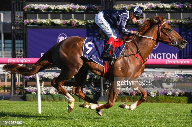 Dean Yendall riding Savoie winning Race 7 AAMI Victoria Derby Trial during Melbourne Racing at Flemington Racecourse on September 26 2018 in...
