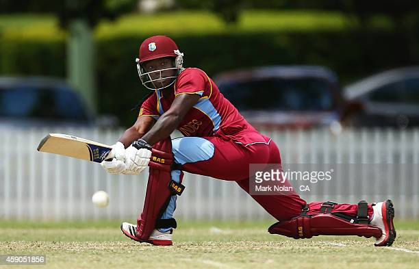Deandra Dottin of West Indies bats during the Women's One Day International match between Australia and the West Indies on November 16 2014 in Bowral...