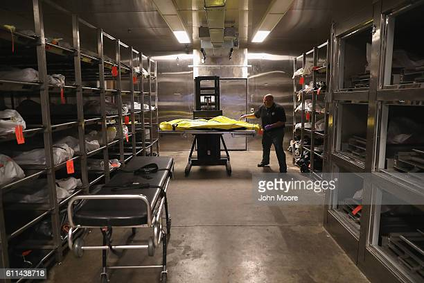 Death investigator Trevis Hairston moves a corpse in the morgue of the Pima County Medical Examiner on September 29 2016 in Tucson Arizona Hundreds...