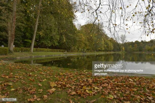 Death leaves on turf along 'l'Etang du Moulin'
