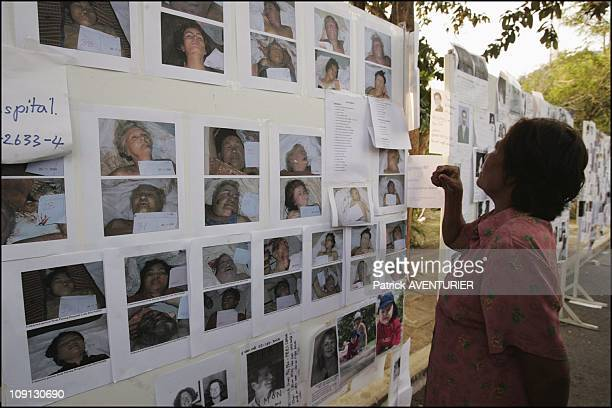 Death Toll Rises In Unprecedented Tsunami Disaster On December 29 2004 In Phuket Thailande Families And Friends Posting Pictures Of Missing Loved...