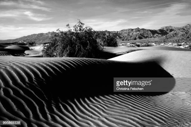 death valley dunes - christina felschen - fotografias e filmes do acervo