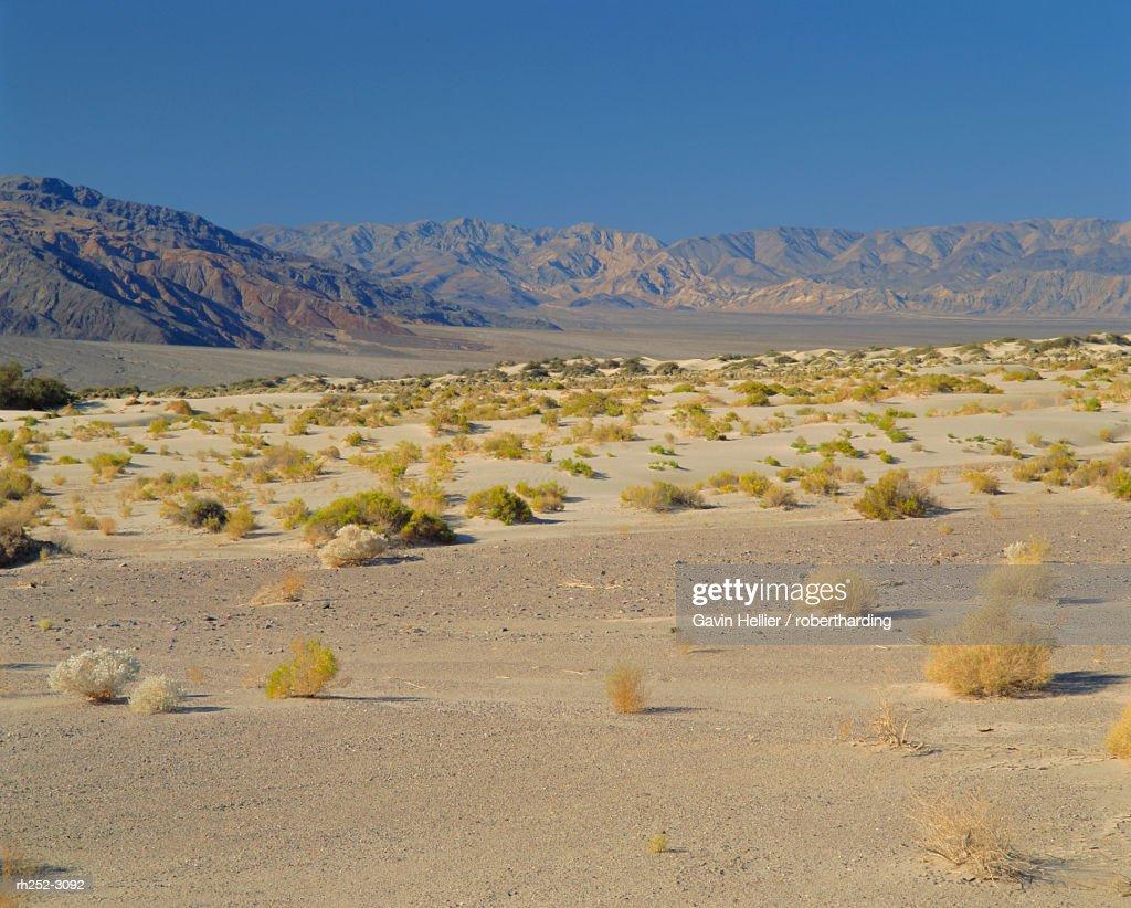 Death Valley National Park, California, USA, North America : Foto de stock