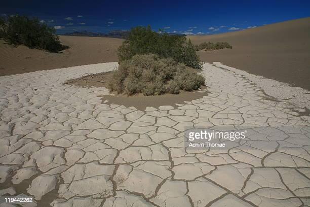 death  valley, usa - achim thomae stock-fotos und bilder