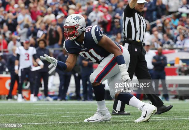 Deatrich Wise Jr #91 of the New England Patriots celebrates sacking Deshaun Watson of the Houston Texans during the first half at Gillette Stadium on...