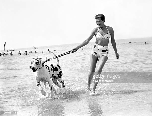 Deauville Beach. Countess De Bremond D Ars With Her Dogs In 1938.