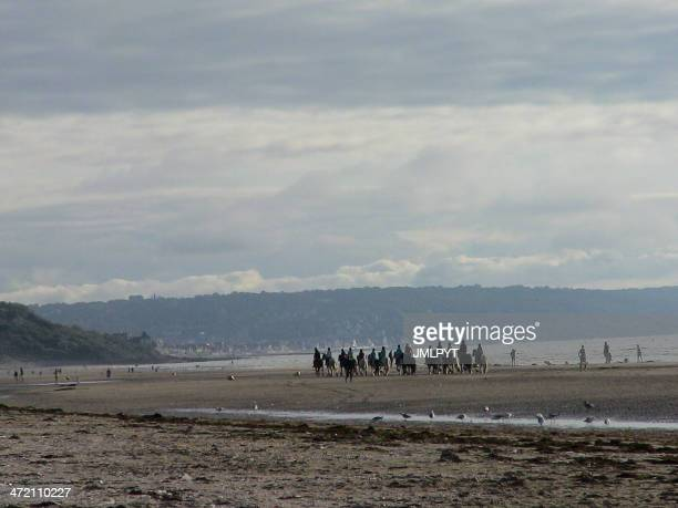 Deauville, Normandy, Coast, horse ride, France