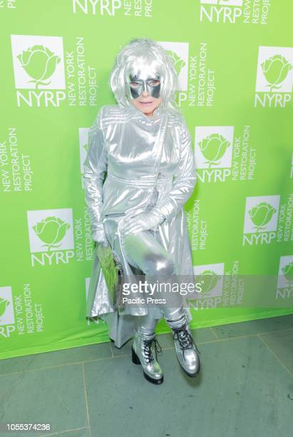 Debbie Deborah Harry attends Bette Midler 2018 Hulaween on theme of Cosmos Benefit for New York Restoration Project at Cathedral of St John the Divine