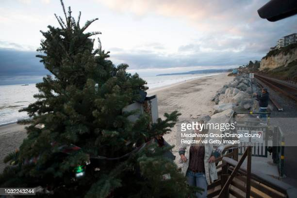Debbie Sheldrake looks up at the tree she's brought down to Calafia State Beach for the public to decorate in San Clemente on Wednesday, Dec. 20,...