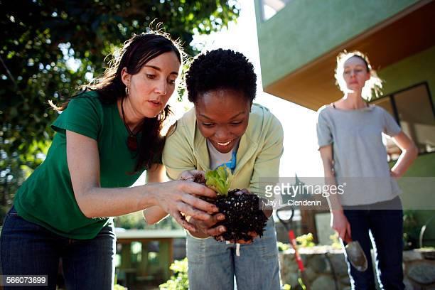 Deborah Eden Tull, left, shows Andrea Johnson, from Stevenson Ranch, how to separate lettuce transplants before planting, while Annalise Mazonas,...