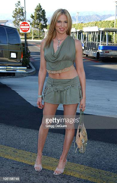 Deborah Gibson during 2003 Teen Choice Awards Arrivals at Universal Amphitheatre in Universal City California United States