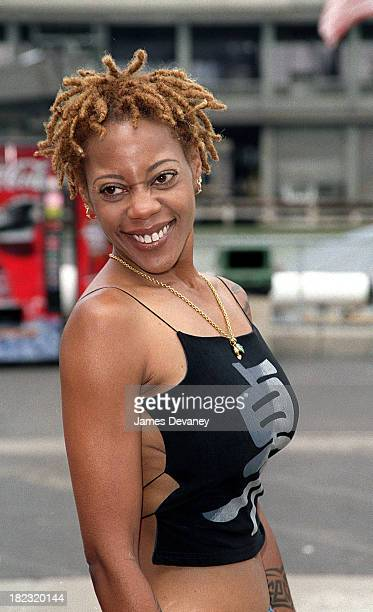 Debra Wilson during FOX Network's 20002001 Program Schedule Unveiling Party at Interpid Museum in New York New York United States