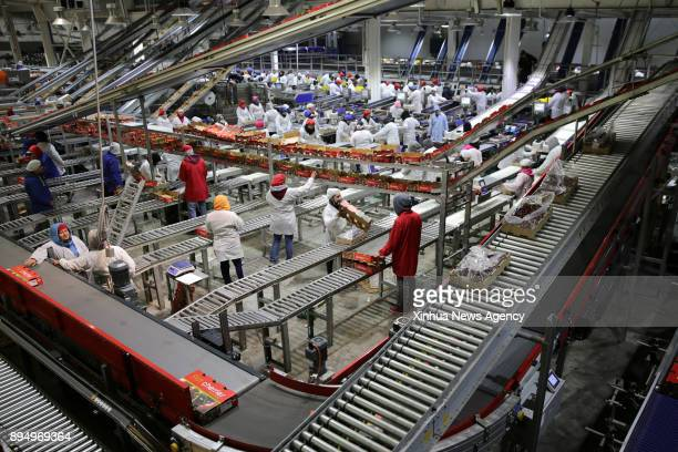 Workers sort cherries in a company in Chile Nov 28 2017 In recent years a number of China's technological innovations have been making their moves in...