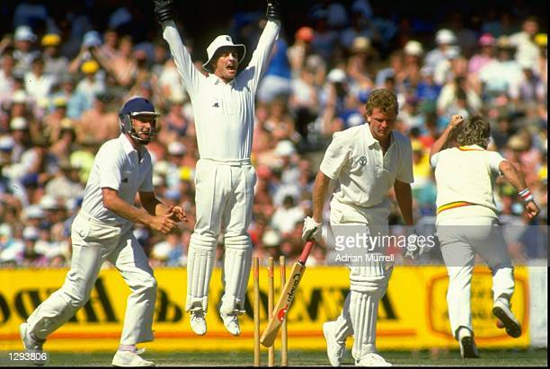 England captures the wicket of Craig McDermott of Australia during the Fourth Ashes Test match at the Melbourne Cricket Ground in Australia England...