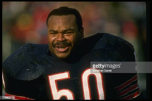 Linebacker Mike Singletary of the Chicago Bears looks on during a game against the Green Bay Packers at Soldier Field in Chicago Illinois The Packers...