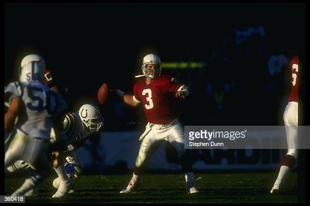 Quarterback Timm Rosenbach of the Phoenix Cardinals looks to pass the ball during a game against the Indianapolis Colts at the Sun Devil Stadium in...