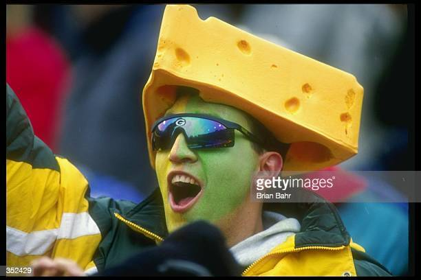 A Green Bay Packers fan celebrates during a game against the Pittsburgh Steelers at Lambeau Field in Green Bay Wisconsin The Packers won the game...