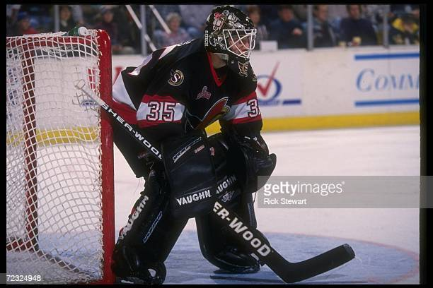 Goaltender Mike Bales of the Ottawa Senators looks on during a game against the Buffalo Sabres at Memorial Auditorium in Buffalo New York The Sabres...