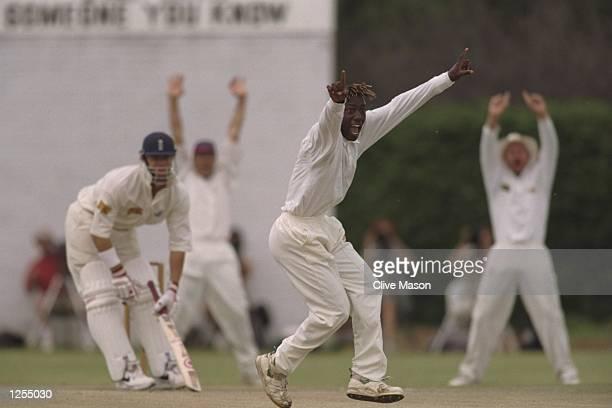 Henry Olonga of Zimbabwe, takes the wicket of Thorpe during England's tour match against Matabeleland in Bulawayo, Zimbabawe. Mandatory Credit: Clive...