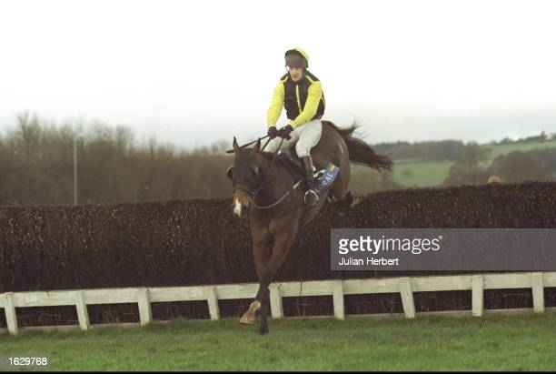 Tom Jenks on Earth Summit jumps a fence during the Welsh Grand National at Chepstow in Great Britain Mandatory Credit Julian Herbert /Allsport