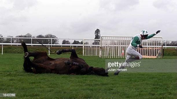 Timmy Murphy parts company with Majestic Storm at Lingfield Parks 2ND Open Ditch during The Mac Vidi Novices Steeple Chase Race which was won by...