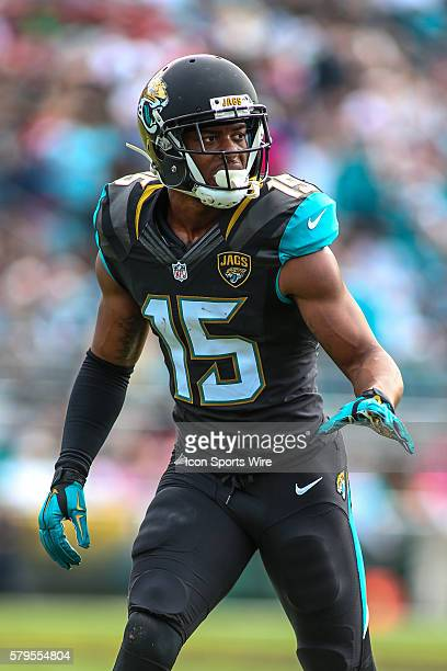 Jacksonville Jaguars Wide Receiver Allen Robinson [11111] during the NFL game between the Atlanta Falcons and the Jacksonville Jaguars at Everbank...
