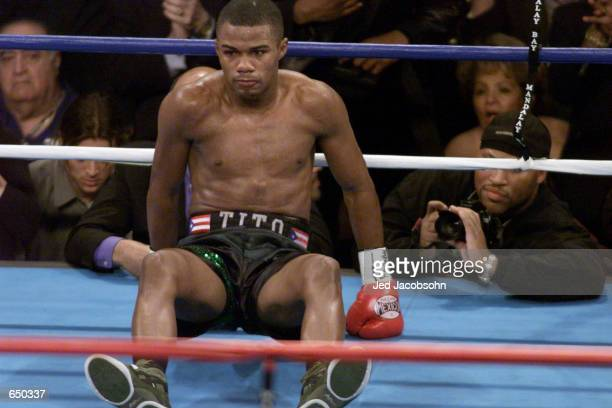 Felix Trinidad falls to the ground after being hit by Fernando Vargas in the fourth round during their WBA/IBF super welterweight and junior...