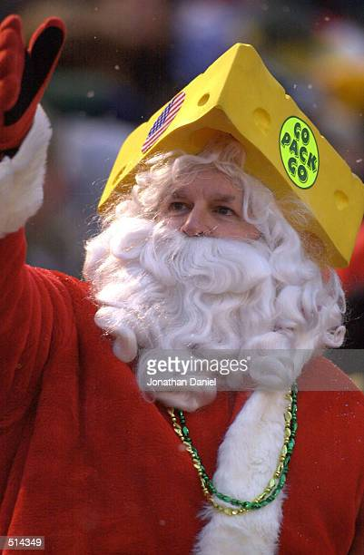 Green Bay Packer fan Mike Roorbach of Marion, Indiana is dressed for the season at a game against the Cleveland Browns at Lambeau Field in Green Bay,...