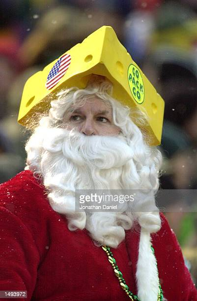 Green Bay Packers fan Mike Roorbach is dressed for the season during the game against the Cleveland Browns at Lambeau Field in Green Bay, Wisconsin....