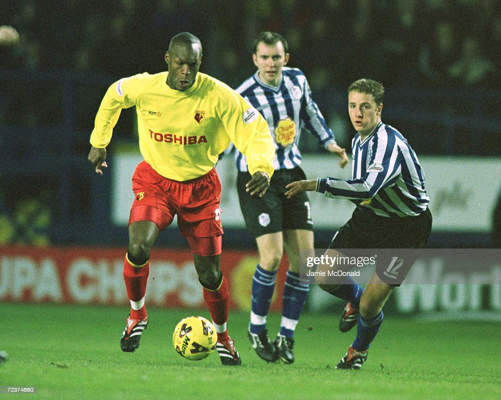 Sheff Wed v Watford Gayle : News Photo