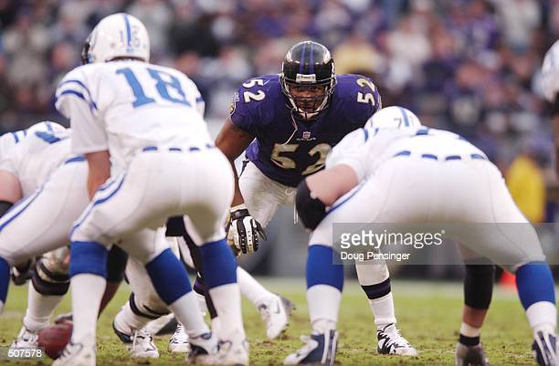 Ray Lewis of the Baltimore Ravens faces the Indianapolis Colts during the game at PSINet Stadium in Baltimore, Maryland. The Ravens defeated the...