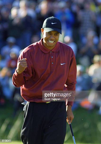 Tiger Woods pumps his fist after making birdie on the 18th hole to win the Williams World Challenge at Sherwood Country Club in Thousand Oaks...