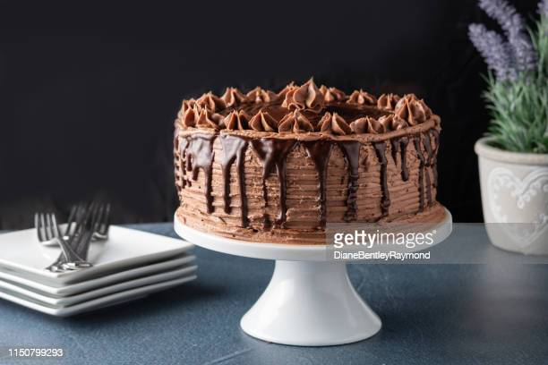 decadent chocolate cake with chocolate ganache - chocolate cake stock pictures, royalty-free photos & images