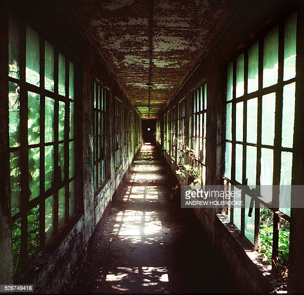 A decayed corridor between buildings on Ellis Island The windows are overgrown with vegetation Photo taken in summer of 1982