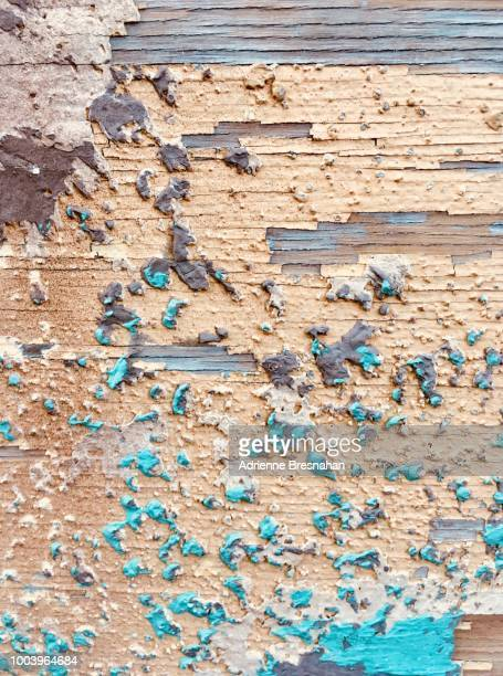 Decaying Wood Wall