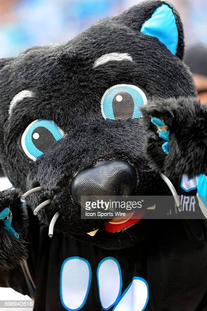 December 13 | Sunday: Carolina Panthers mascot Sir Purr enjoys the game against the Atlanta Falcons at Bank of America Stadium in Charlotte, North...