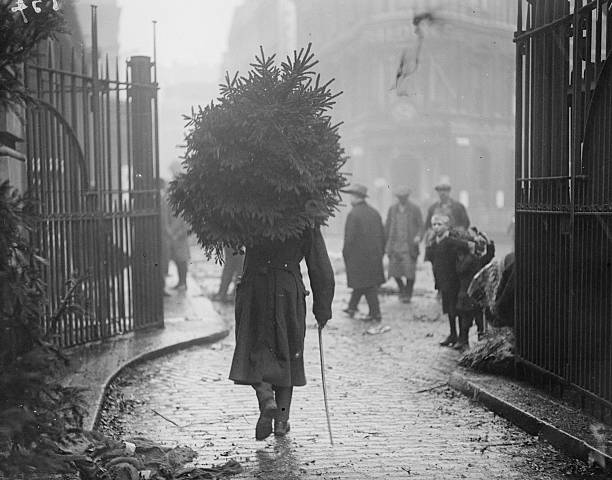 A soldier carrying a christmas tree.