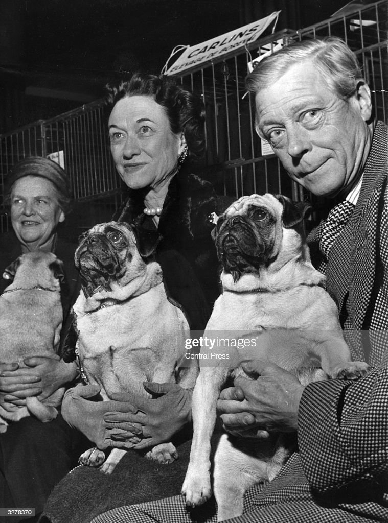 The Duke and Duchess of Windsor at the International Canine Exhibition, Paris. The Duke is holding Goldengleam Trooper and the Duchess is with Davy Crockett, who won a first prize.