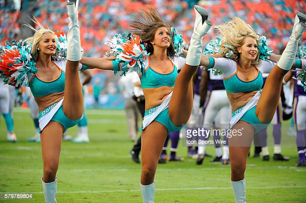 Miami Dolphins cheerleaders dance and perform with their pom poms on the during the NFL football game between the Minnesota Vikings and the Miami...